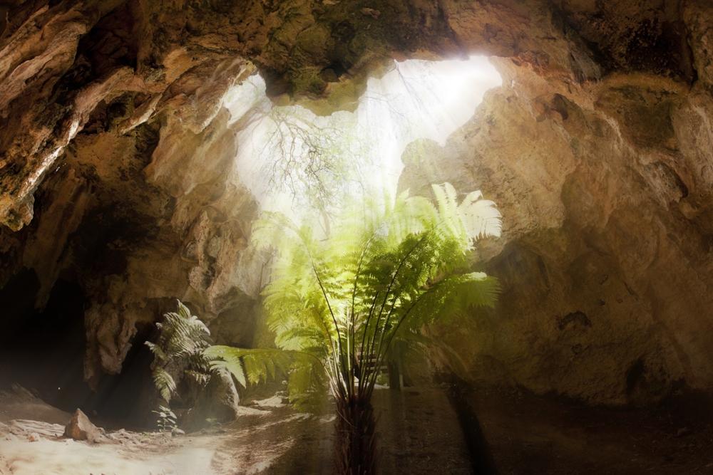 Naracoorte Caves – Southern Australia